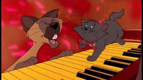 Niemand Swingt Zo Als Een Echte Kat