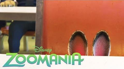 ZOOMANIA - Einen Elefanten zur Mücke machen - Ab 3
