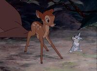 Bambi-disneyscreencaps.com-481