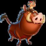 Timon and Pumbaa (1)