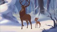 Bambi2-disneyscreencaps.com-712