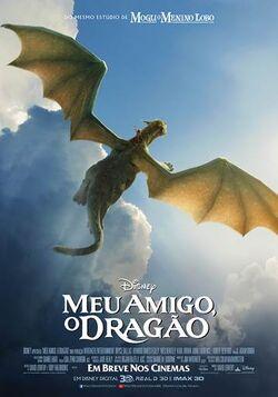 Meu Amigo O Dragão - 2016 - Pôster Nacional 03
