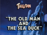 The Old Man and the Sea Duck