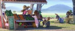 Judy arbeitet auf der Farm