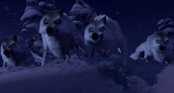 Lobos Frozen