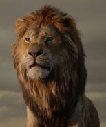 Simba 2019 profile
