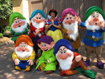 Snow-White-And-The-Seven-Dwarfs
