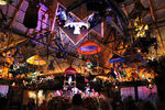 Enchanted-tiki-room-image