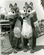 Chip and Dale 79 B