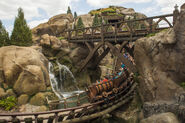 Seven Dwarfs Mine Train 14
