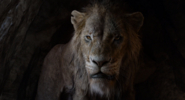 The Lion King (2019 film) (6)