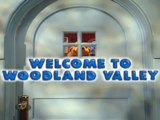 Welcome to Woodland Valley