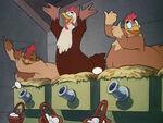 1941-poule-4