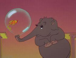 Elephanchine