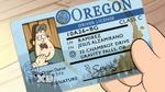 Soos drivers license