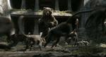 The Jungle Book 2016 (film) 19