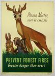 Bambi Forest Fires Poster