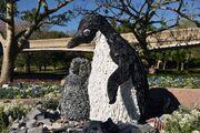 Washed Ashore Penguin