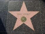 Walt Disney HWOF television star
