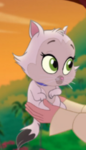 Roise-Kitten