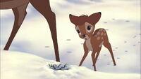 Bambi2-disneyscreencaps.com-639
