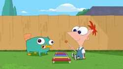 Perry the platypus disney wiki fandom powered by wikia baby perry and phineas enjoy playing music voltagebd