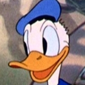 Donald Duck perfil