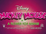 Uma Flor para a Minnie