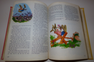 Walt disney's story land 10