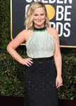 Amy Poehler 76th Golden Globes