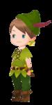 Peter Pan Costume Kingdom Hearts χ