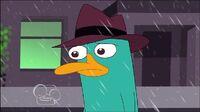 Sad Perry I Walk Away