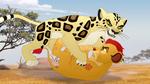 The-golden-zebra (519)