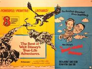 The-best-of-walt-disney-true-life-adventures-the-absent-minded-professor-1976-uk-quad-17140-p
