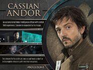 Cassian Andor Profile