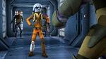 The rebels find ezra