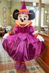 Minnie Iinventions