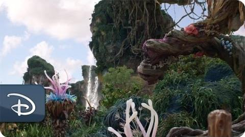Pandora - The World of Avatar Meet-Up - Disney's Animal Kingdom