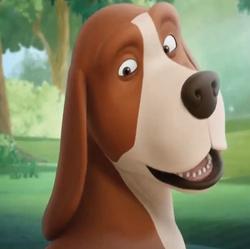 Rex-the-dog