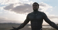 Black Panther (film) 30