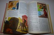 Walt disney's story land 13