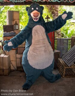 Baloo at Disney parks