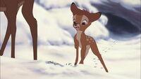 Bambi2-disneyscreencaps.com-632