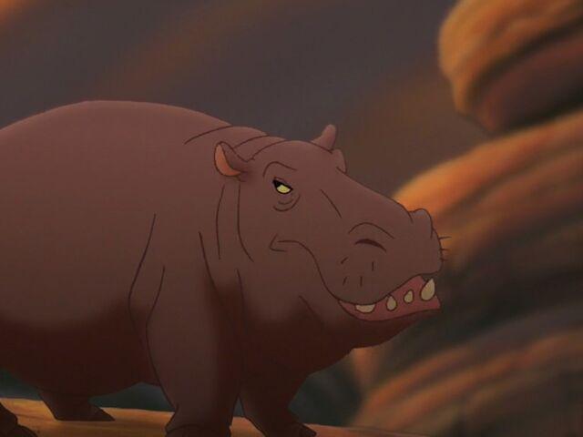 File:Hippopotamus Amphibious.jpg