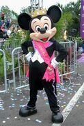Prince Mickey - Princess Half Marathon