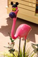 Yo Yo Flamingo WDW