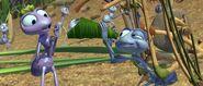 Bugs-life-disneyscreencaps.com-606