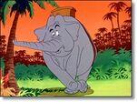 Dolores-elephant