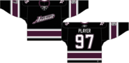 Mighty Ducks alternate jersey 2003