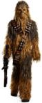 Solo Character Render 03